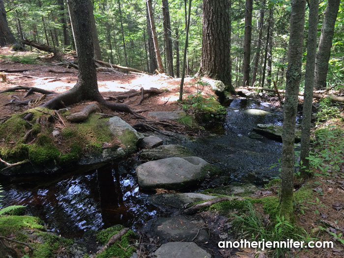 Wordless Wednesday (7.29.15): The Natural Path